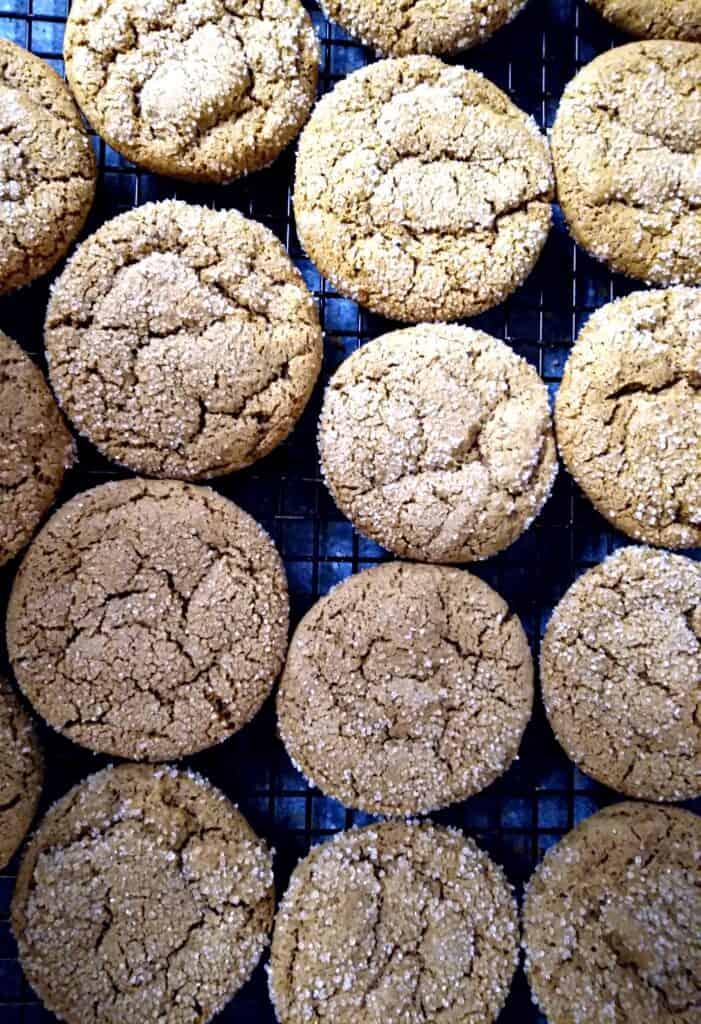 amish gingersnap cookies