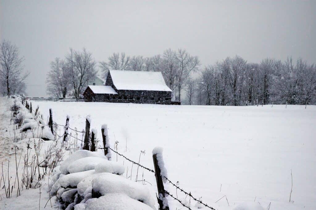 wintertime on the farm