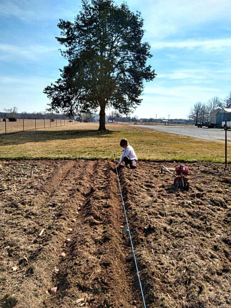 kids in the garden planting seeds
