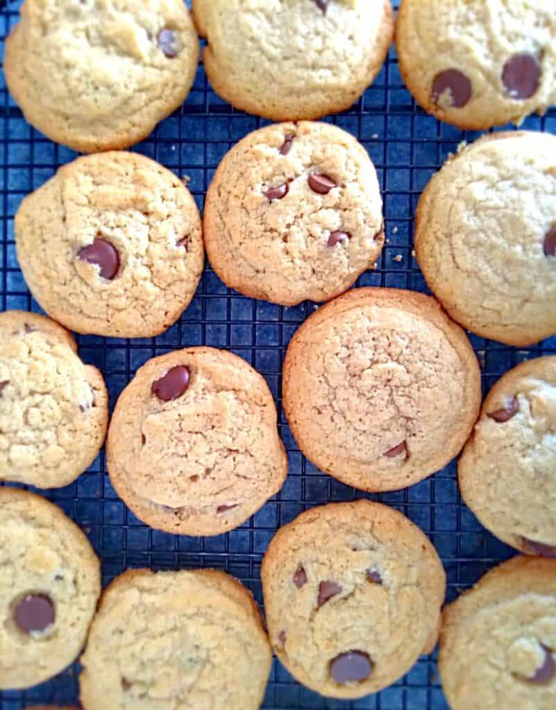 Homemade Amish chocolate chip cookies